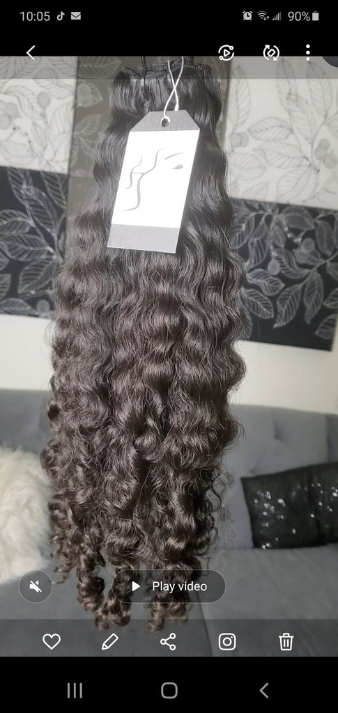 Burmese Curly *Ready to Ship