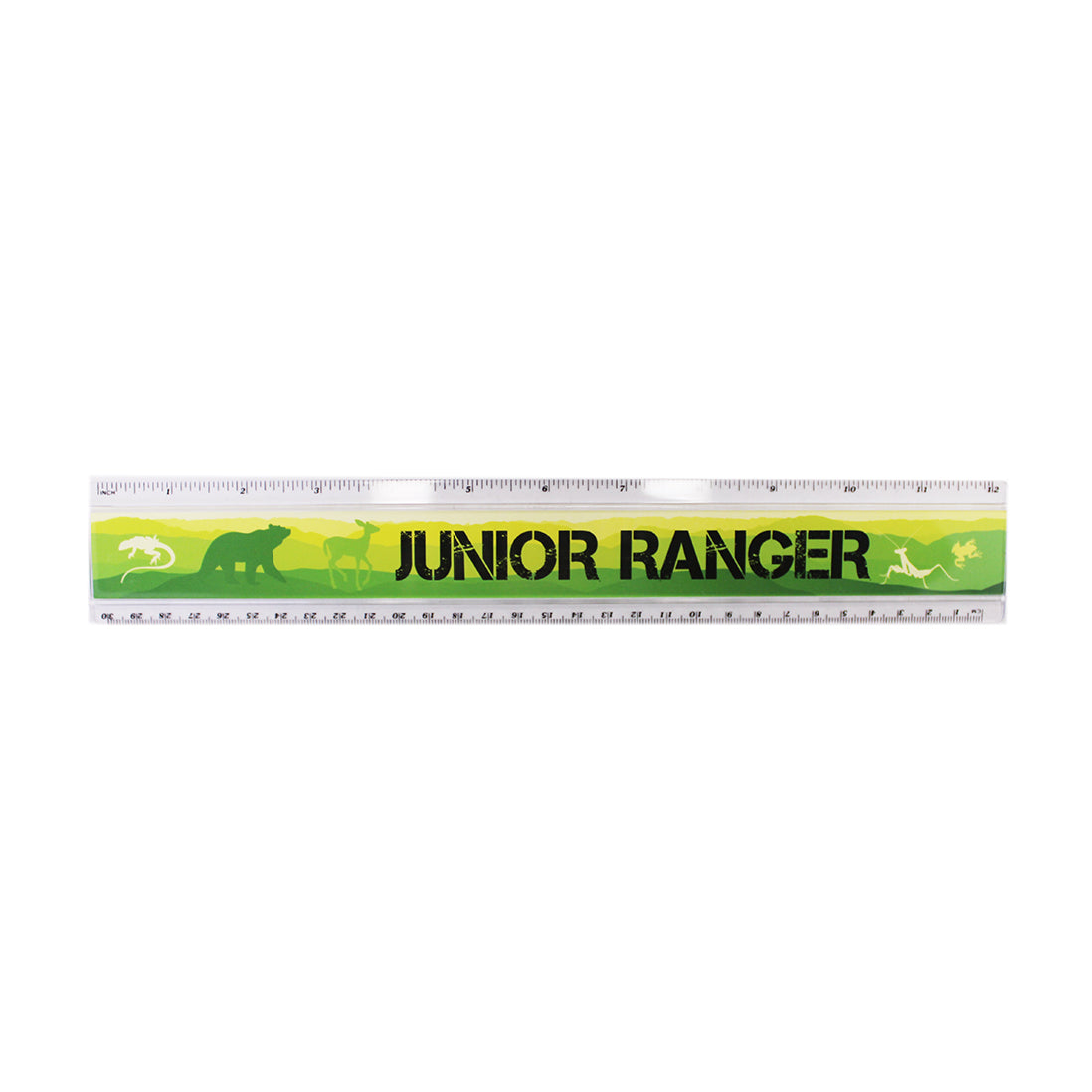 Junior Ranger Ruler, Green