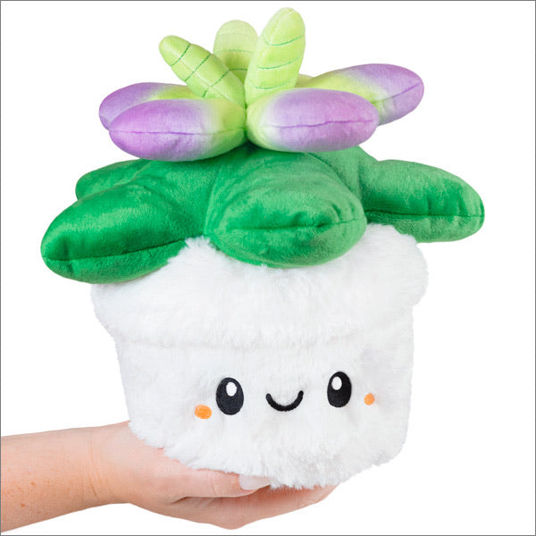 Squishable Mini Succulent