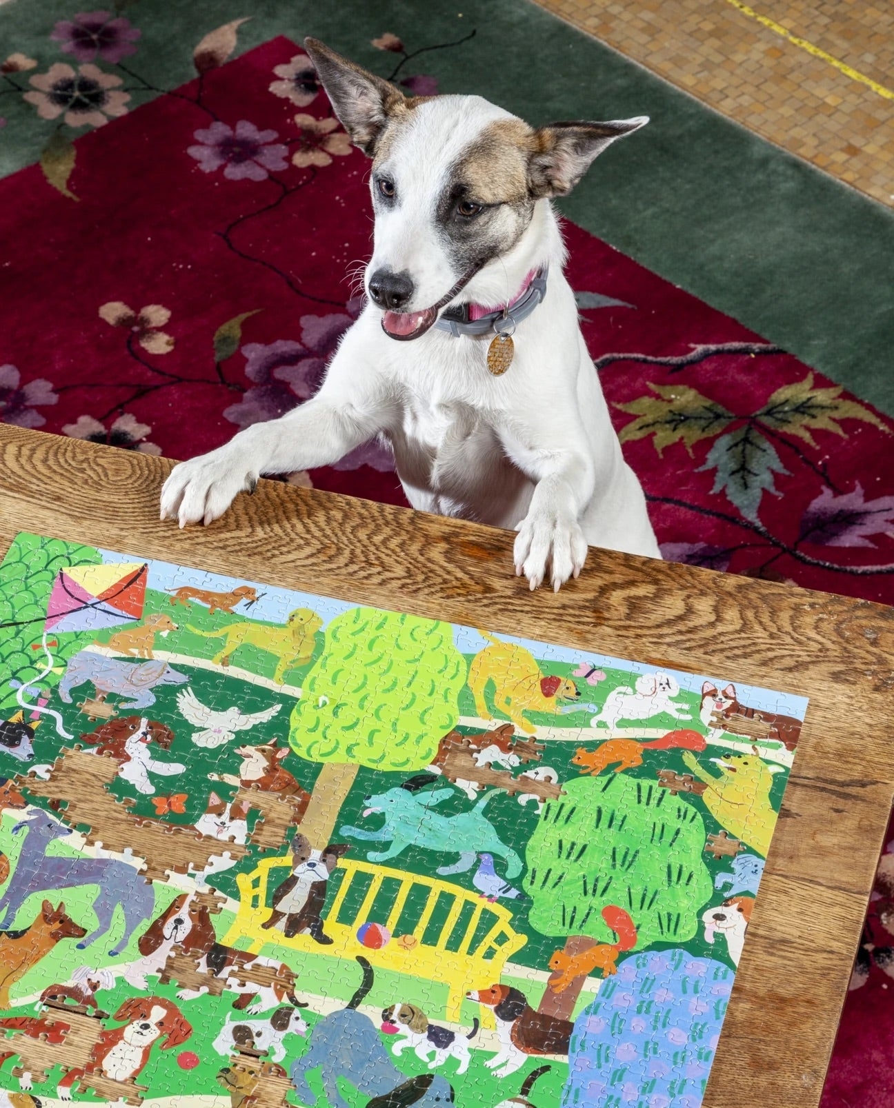 Eeboo Dogs in the Park Puzzle 1000pc
