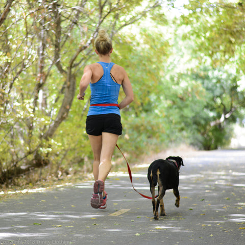 Running with your dog or dog as a running partner