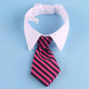 Adjustable Dog Shirt Collar And Tie