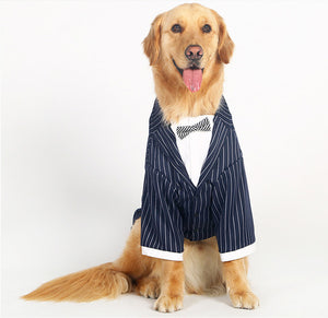 Posh Pinstripe Suit And Bow Tie Costume For Large Dogs