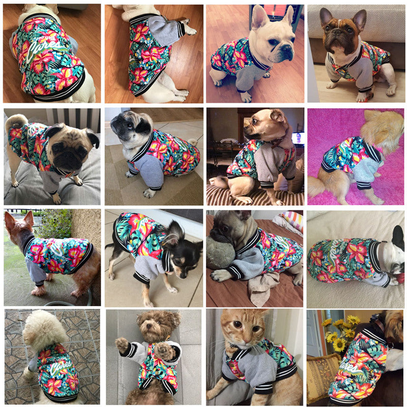 """No One Cares"" Fashion Jacket For Dogs"