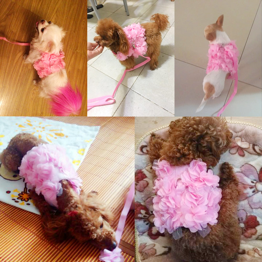 Cute Pink Floral Vest with Leash