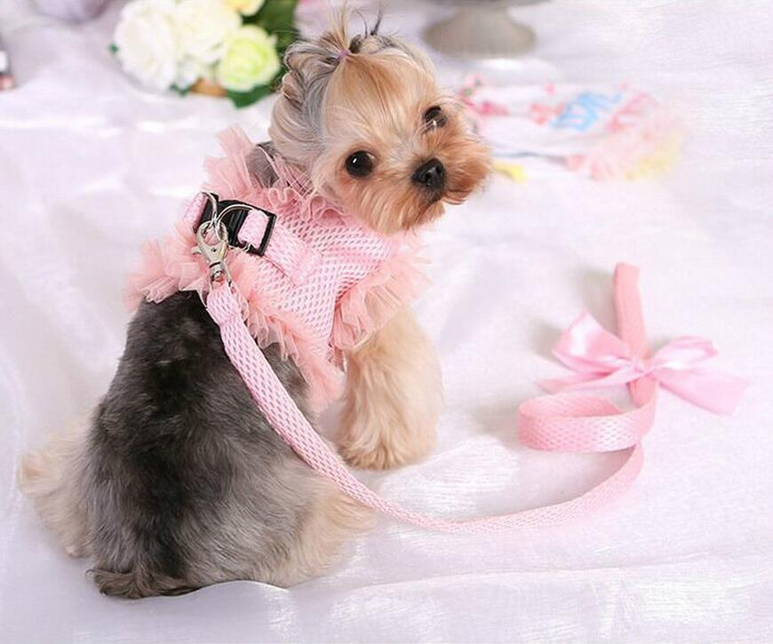 Buffy Lace Harness and Leash Set