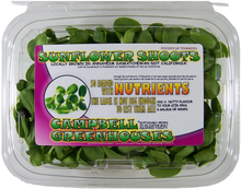 FRESH SUNFLOWER SHOOTS
