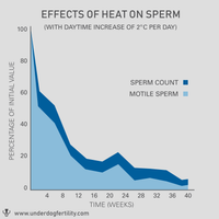 Graph showing lower sperm count and decreased motility from testicular overheat.