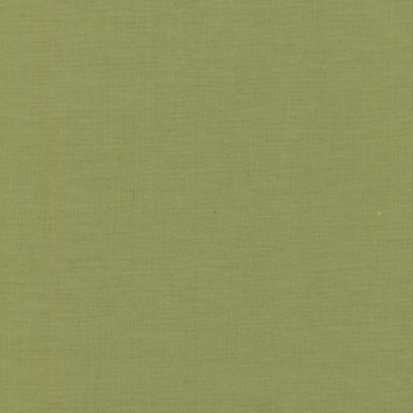 RJR FABRICS - COTTON SUPREME SOLIDS -RJR YOSEMITE - 272
