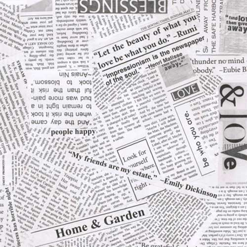 Windham Fabrics - One of a Kind -Newspaper by Carrie Bloomston