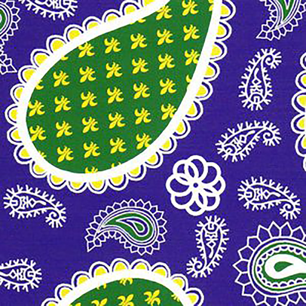 PURPLE AND GREEN PAISLEY FABRIC