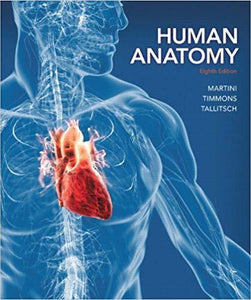 Test Bank for Human Anatomy 8th Edition  - PDF Version