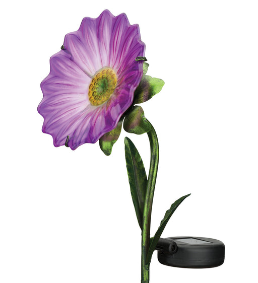 Mini Solar Daisy Stakes - Purple