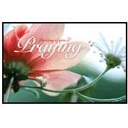 Postcard-Praying For You (Romans 15:13 KJV) (Pack of 25) (Pkg-25)