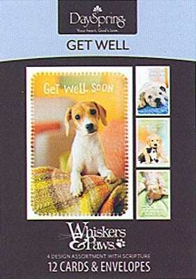 Get Well-Whiskers & Paws Boxed Cards
