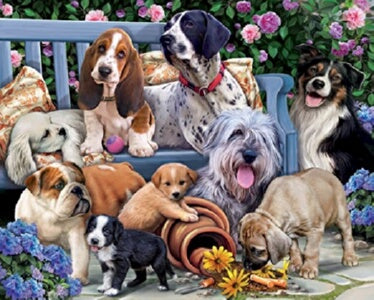 Jigsaw Puzzle-Dogs On A Bench (1000 Pieces)