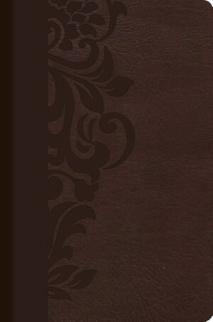 RVR 1960 Study Bible For Women-Brown LeatherT-Spanish