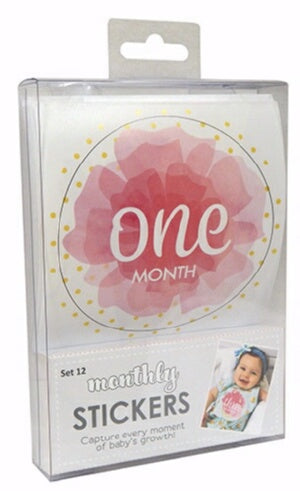 First Year Monthly Stickers For Girls (Use On Clot
