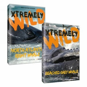 Xtremely Wild: A Whale of a Time