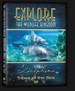 Explore The Wildlife Kingdom : DOLPHINS Tribes of the Sea DVD