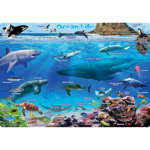 Ocean Life Postermt Pals Smart Poly Single Sided
