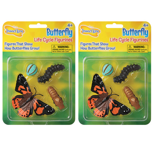 (2 Ea) Butterfly Life Cycle Stages