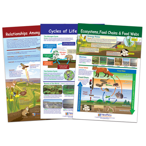 Ecology Bulletin Board Chart Set Grades 3-5