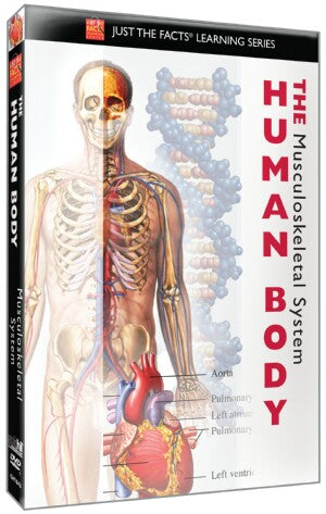 Just the Facts: The Human Body: Musculoskeletal