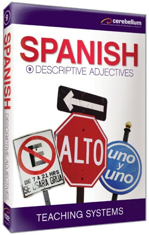 Teaching Systems Spanish Module 9: Descriptive Adjectives