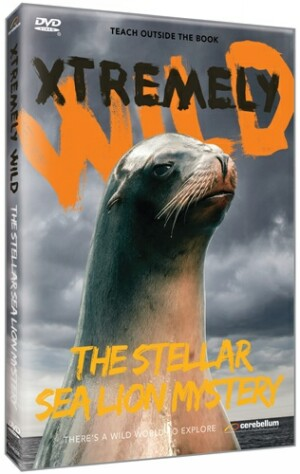 Xtremely Wild: The Stellar Sea Lion Mystery