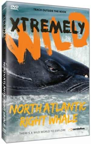 Xtremely Wild: The North Atlantic's Most Endangered Whale: The Rightwhale