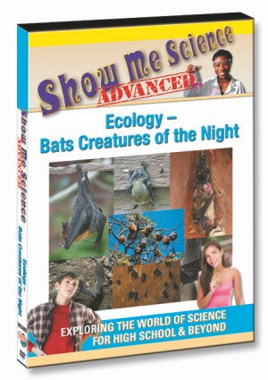 Ecology – Bats Creatures of the Night