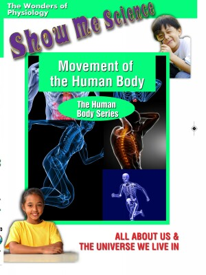 Movement of the Human Body