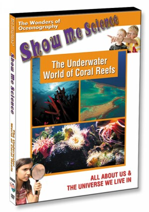 The Underwater World of Coral Reefs