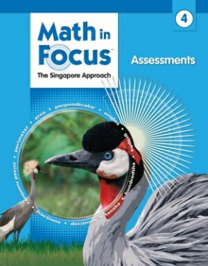 Math In Focus Grade 4 Assessments: The Singapore Approach