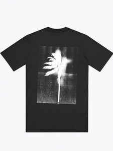 Double Rainbouu - Palms T-Shirt - black - buy Online at LONELIE STORE