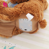 Teddy Bear Reading Story Book