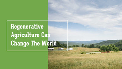 REAL TALK— Regenerative Agriculture Can Change The World