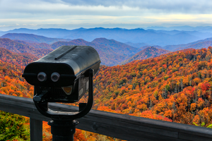 See the Golden Beauty of Fall through Tennessee's EnChroma Powered Viewfinders