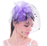 Retro Style Bird Cage Mesh Bridal Face Veil Feather Fascinator Hair Clip Wedding