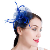 Hair Clip Party Veil Hat Feather Fascinators