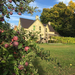 Eastern Ontario wine and cider makers pull out all the stops for La Vida Local guests