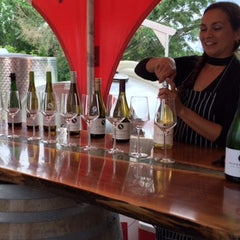 Allison pouring flight of wines