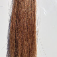 Natural False horse tail