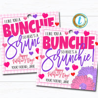 Valentine Scrunchie Tags, Hair Tie Girl Valentine I like You a Bunchie Gift Tag, Classroom School Teacher Staff Label, DIY Editable Template