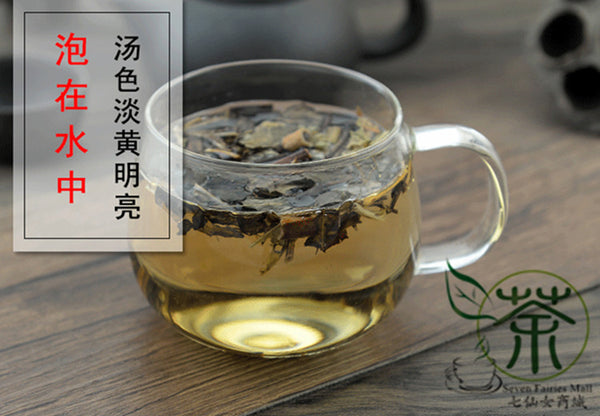 Zhong Jie Feng, Glabrous Sarcandra Herb, Herba Sarcandrae