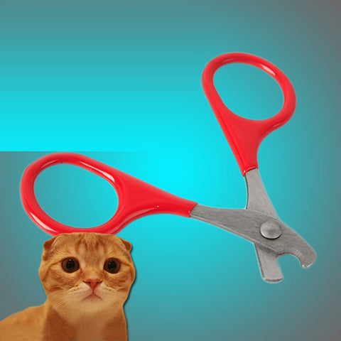 Cat Claw Scissors