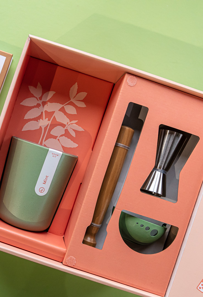 Modern Sprout Gift Box