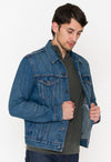 Levi's Trucker Denim Jacket - RUST & Co.