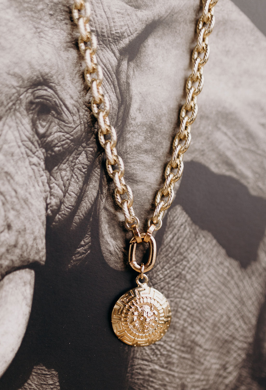 "Lion Necklace 20"" - RUST & Co."